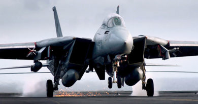 F-14 Tomcat Fighter Jet